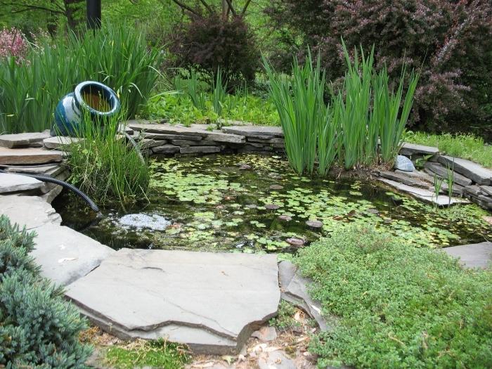 Искусственный водоем своими руками: рукотворное болото