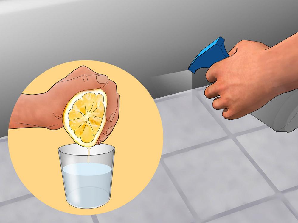 Избавиться от чешуйницы с помощью цитрусового запаха