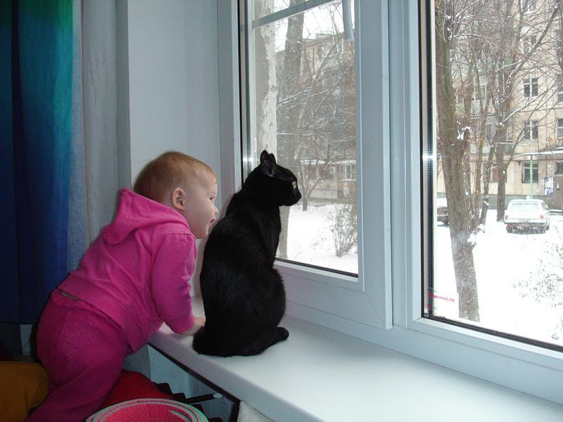 Виды защиты на пластиковые окна для безопасности детей 47