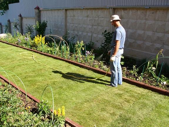Полив газона вручную